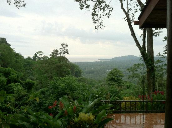 Samasati Retreat & Rainforest Sanctuary: Checking the surf from the balcony.