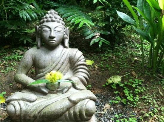 Samasati Nature Retreat: Buddha sits outside of the yoga studio