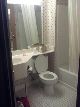 Econo Lodge Inn and Suites: bathroom