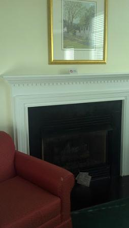 King's Creek Plantation Resort: Nice Fireplace