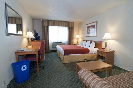 BEST WESTERN PLUS Shakopee Inn: Guest Room