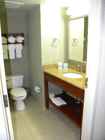 Hampton Inn Miami-Coconut Grove/Coral Gables: bathroom