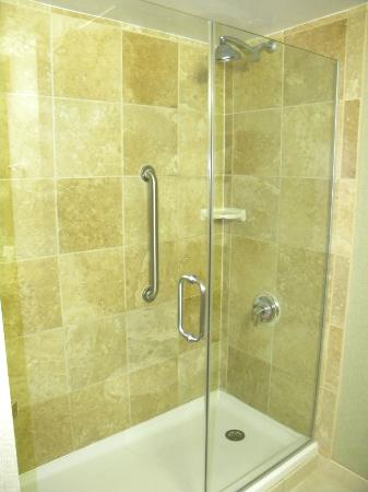 Hampton Inn Miami-Coconut Grove/Coral Gables: shower
