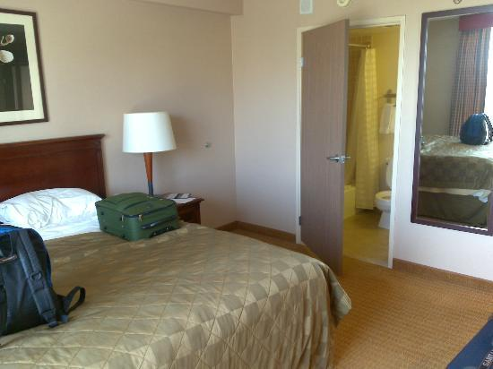 Embassy Suites by Hilton San Francisco Airport - South San Francisco: Bed int bathroom
