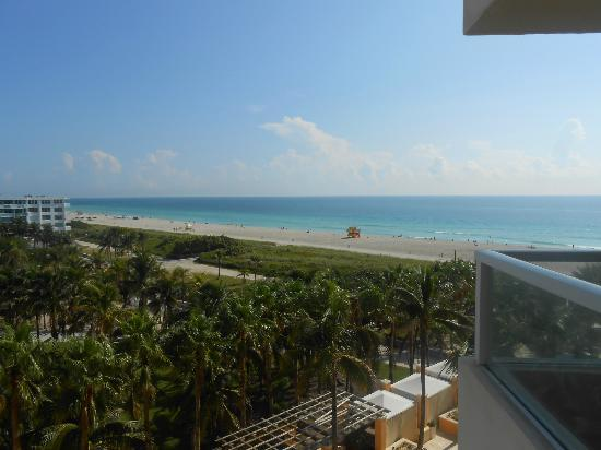 Marriott Stanton South Beach: View from room