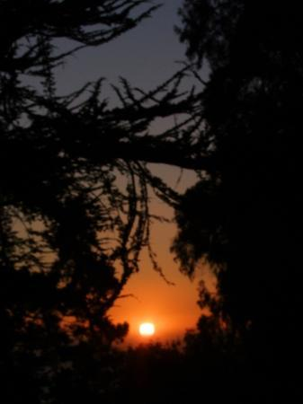Plaskett Creek Campground: Sunset from our site through the trees