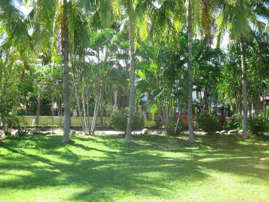 Pure Vibes Backpackers Resort: view from the volleyball court