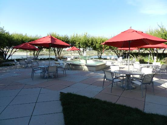 Marina Inn Hotel & Conference Center: The patio, with a shaded view of the river.