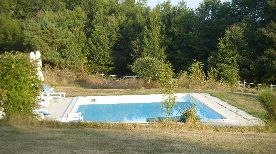 Mauzens-et-Miremont, : a lovely secluded pool