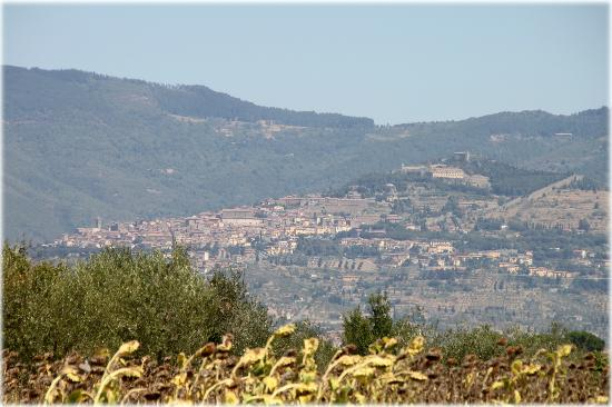 Il Villino di Cortona: Cortona view