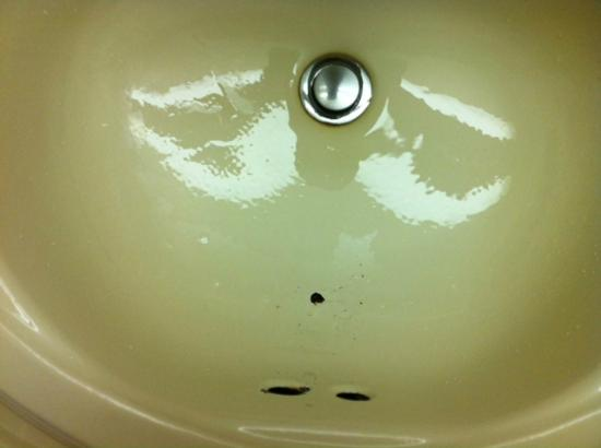 Quality Hotel Downtown Ottawa: Hole in the sink.