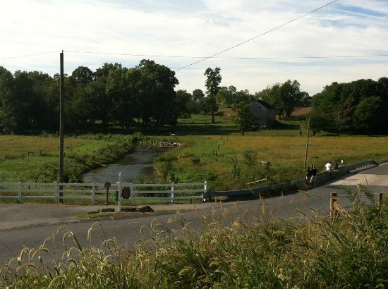 Gordonville, Pensylwania: View of the stream along the farm