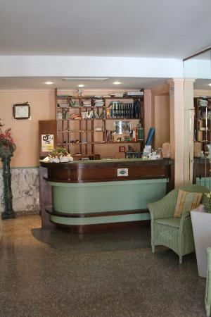 Hotel Mariani: Reception