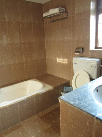 Bharatpur, Непал: Bathroom