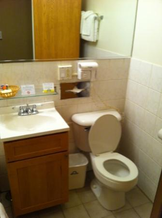 Days Inn Chicago: other side of bathroom in standard room