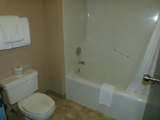Rundlestone Lodge: bathroom