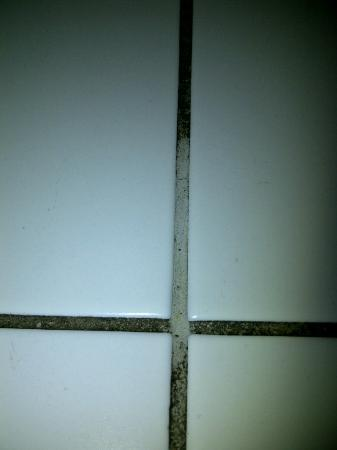 Josefstadt Appartements: Wiped the grout to see what colour it really is