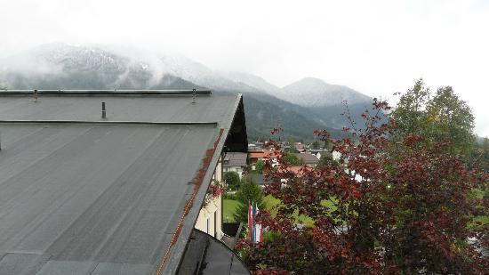 Hotel Alpina : Disappointing balcony view!