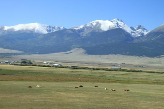 Hampton Inn Canon City: Mountains near Westcliffe, Colo.