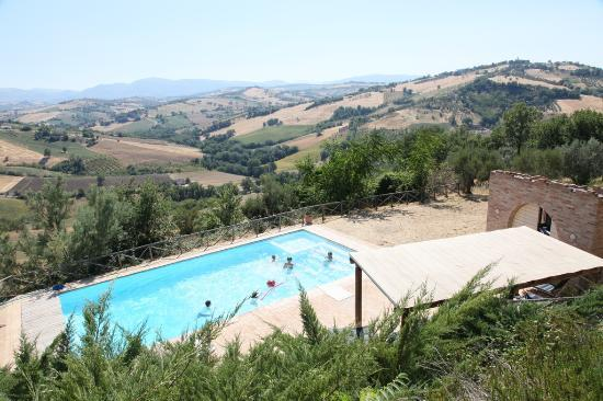 Colmurano, Italy: The swimmingpool from the house-level
