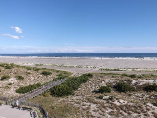 Ocean Holiday Motor Inn: View from the 5th floor