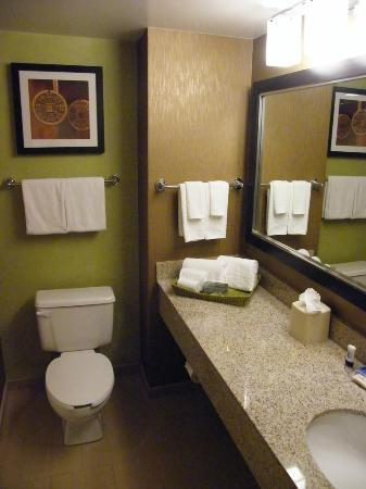 Fairfield Inn & Suites Washington, DC / Downtown: The bathroom...