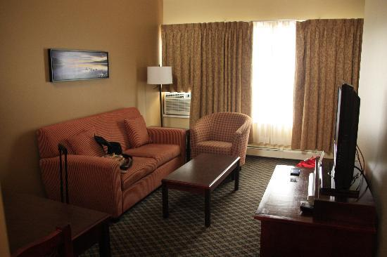 Robson Suites: Living room