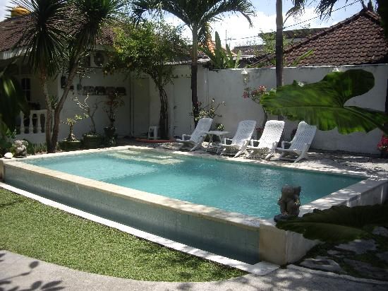 Gardenia Guesthouse: the lovely pool