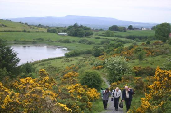 Fermanagh Self Catering - Stables &amp; Rafters: Climb local hills for great views