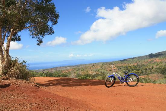 Turtle Cove Suites: Waimea Canyon Bike Tour