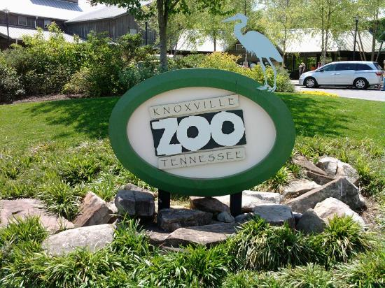 Knoxville zoological gardens 350 knoxville zoo drive knoxville tn