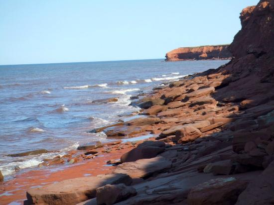 ‪‪Bay Vista Motel‬: Coastline along PEI National Park