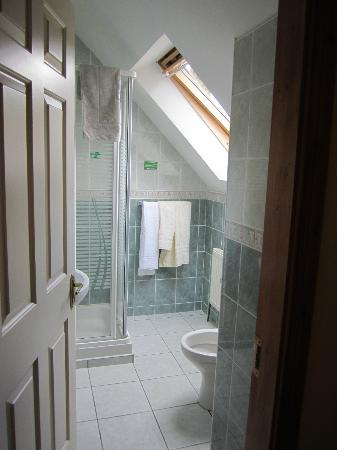 Ashfield Bed & Breakfast: Bathroom