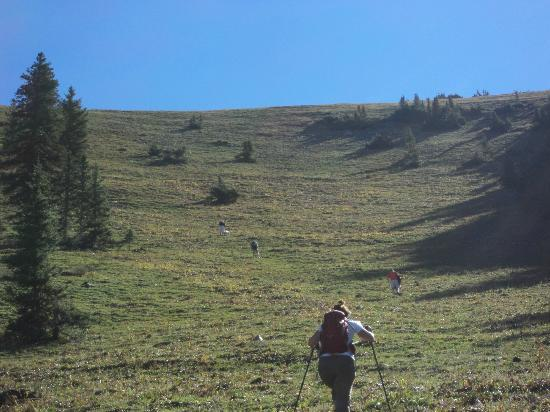 Majestic Dude Ranch: Part of the extreme Hike