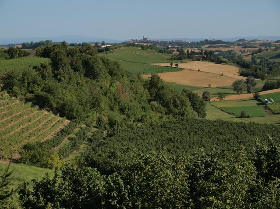 La Quercia Rossa