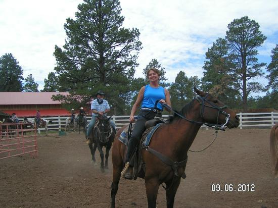 Majestic Dude Ranch: Team Penning Event