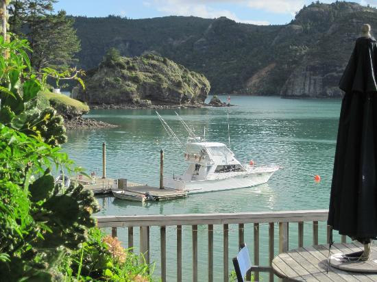 Photo of Kingfish Lodge Resort North Island
