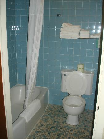 Americas Best Value Inn: Great retro bathroom, roomy, in great condition