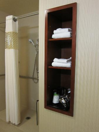 Hampton Inn and Suites Arcata: shower