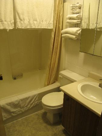 Howard Johnson Hotel Golden: The bathroom. Toiled squeezed in between sink and shower.