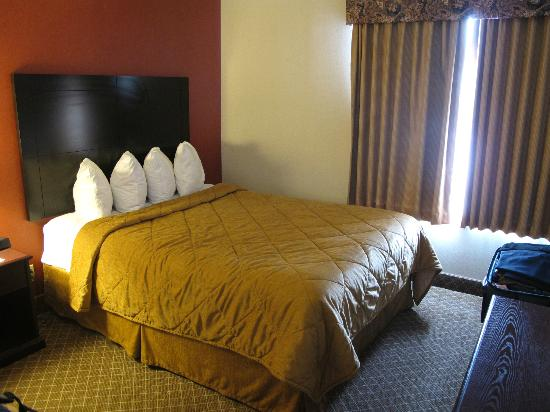 Comfort Inn & Suites Airport: One of the beds.