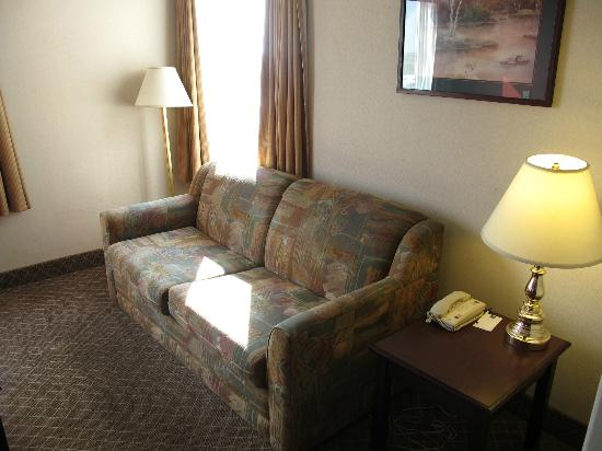 Comfort Inn & Suites Airport: Pull-out sofa.