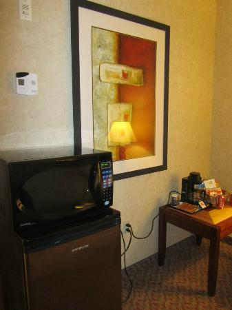 Holiday Inn Express Hotel & Suites Brampton: Mini fridge & microwave in our room
