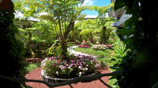 Hilo Seaside Hotel: Landscaping outside of rooms.
