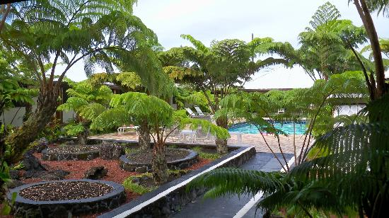 Hilo Seaside Hotel: View of the pool area near our room