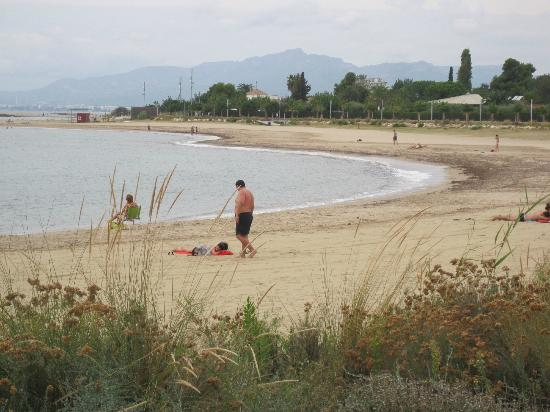 Port Eugeni : Beach with people