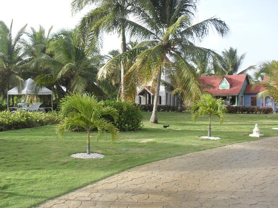 Caribe Club Princess Beach Resort &amp; Spa: Lovely grounds