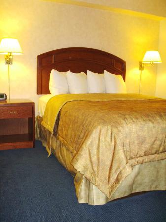 BEST WESTERN Pembroke Inn & Conference Centre: Guest room