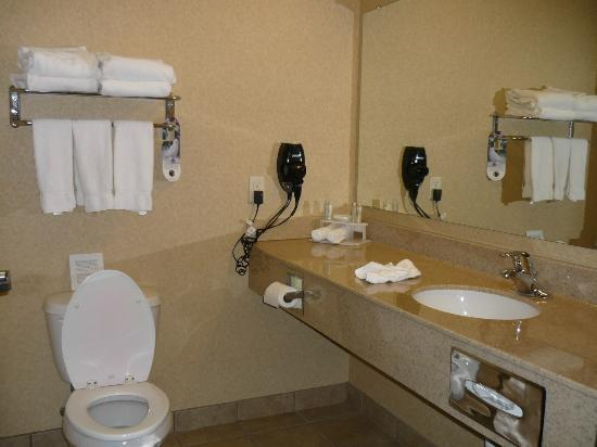 Holiday Inn Express &amp; Suites Sioux Falls - Brandon: Bath