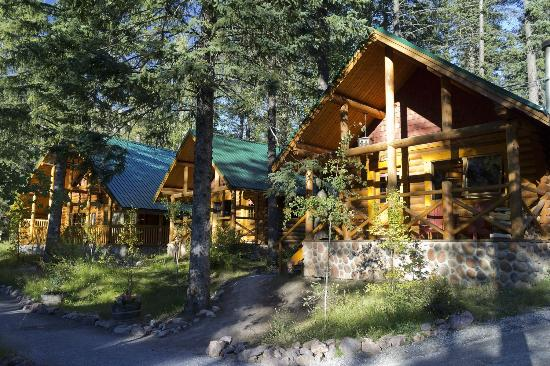 Cathedral Mountain Lodge: Some of the log cabins on the site